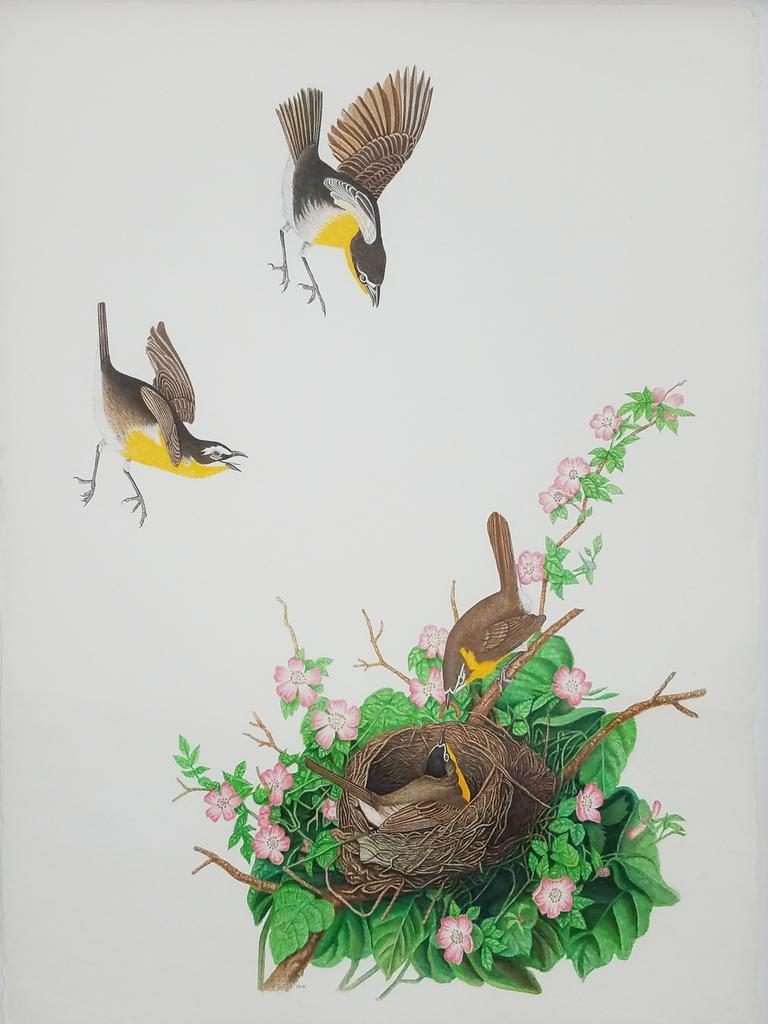 "Robert Fleisher, ""Yellow Breasted Chat,"" 2016, watercolor on paper, 30 x 22 in. © 101/EXHIBIT"