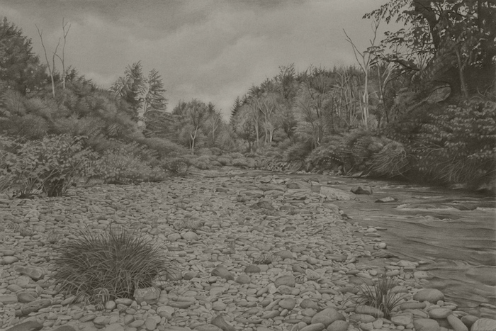 Graphite drawing of a riverbank